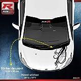 ADNAuto 78038 1 Sticker Capot pour Peugeot 206 207 et 208