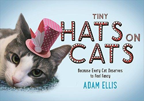 Tiny Hats on Cats by Adam Ellis (2015-11-05)