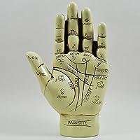 Fiesta Studios 19cm Palmistry Hand Instruction Booklet