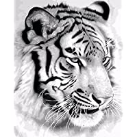 TianMai New Paint by Number Kits - White Tiger 16x20 inch Linen Canvas Paintworks - Digital Oil Painting Canvas Kits for Adults Children Kids Decorations Christmas Gifts (With Frame)