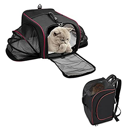 Siivton Pet Backpack Cat Carrier for Small Dogs Cats Rabbits, Collapsible Soft-Sided Mesh & Waterproof Dog Backpack with… 1