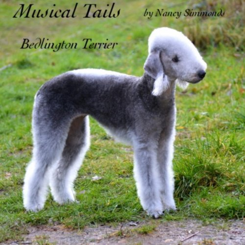 Musical Tails: Bedlington Terrier