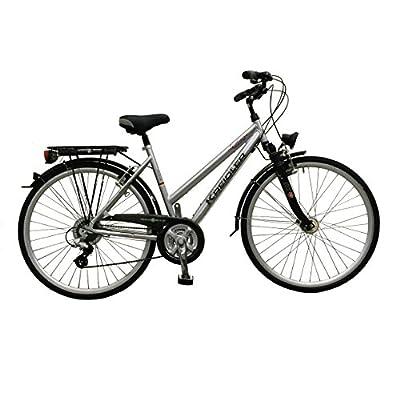 Fahrrad Damenrad Cityrad Stadtrad Kreidler Le Havre silber Trekkingrad Rad Rahmenhöhe 45 cm