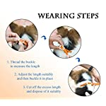 dog anti flea and tick collar,cjmj 90 days effectiveness protection pet repellent collar with natural rubber formula,adjustable 23.6in/60cm length fits for all kinds of dogs and cats Dog Anti Flea And Tick Collar,CJMJ 90 Days Effectiveness Protection Pet Repellent Collar With Natural Rubber Formula,Adjustable 23.6in/60cm Length Fits for all Kinds of Dogs and Cats 51pen3i5WiL