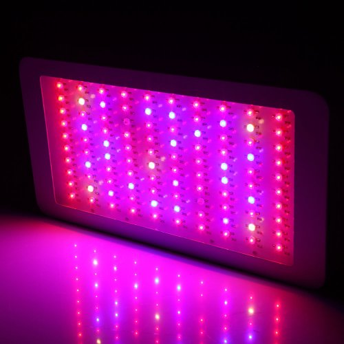 Generic 300w LED Grow Light 10band Full Spectrum 3w Leds with Ir for Plants Vegetative Flowering Less Heat Bigger Yields