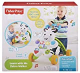 Fisher-Price Learn with Me Zebra Walker Toy - Fisher-Price - amazon.co.uk