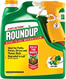 Roundup Fast Action Weedkiller Spray (Ready to Use), 3 L