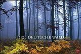 Der deutsche Wald - Ein literarischer Spaziergang: Ein literarischer Spaziergang. Wandkalender 2020. Monatskalendarium. Spiralbindung. Format 58 x 39 cm -