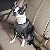 Best Four Paws Dog Harness For Cars - Guardian Gear Paw Print Car Pet Harness, X-Large Review
