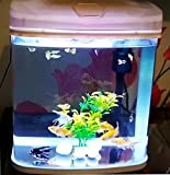 #10: RS Electrical Glass Aquarium Tank RS-300A with LED Lights, Filtration Included. (Random Colour as per Availability)