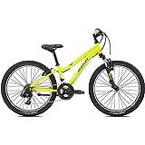 24 Zoll Jugend Mountainbike Fuji Dynamite 24 Comp B Junior MTB