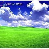 Turfgrass Grass Seeds (Golf Fußballfelder Villa) Sonder Grad Evergreen Rasensamen 1000 Seeds