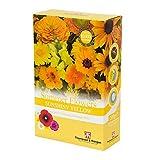 Yellow Summer Fiori Sunshiny Yellow Mix Colori Tema Easy Fai Crescere Yellow Summer Annuari Mix Scatter Confezione, 1 x 200g Confezione di Thompson e Morgan