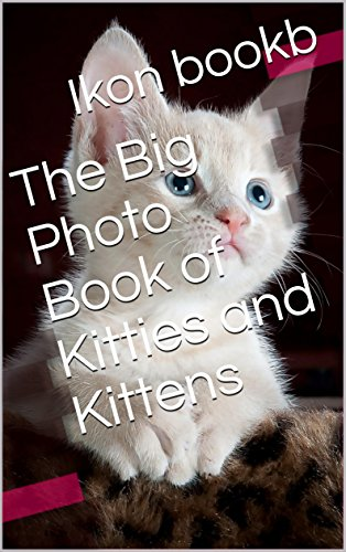 The Big Photo Book of Kitties and Kittens (Cat Who... 1) (English Edition)