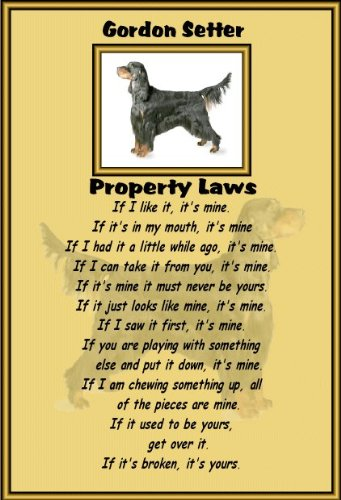 gordon-setter-laminated-a4-sign-property-laws