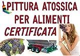 SMALTO VERNICE EPOSSIDICO USO ALIMENTARE alimenti CERTIFICATO Kg 1 acqua olio vino Pittura serbatoi ferro vasche calcestruzzo