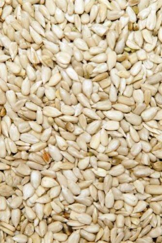 Preisvergleich Produktbild GEVO Sonnenblumenkerne geschält 1kg