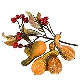 Dadeldo Living & Lifestyle Bastel Set Herbst Natur 5er Deko 4-8-20cm orange Halloween