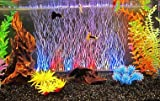 Colourful Aquarium Fish Tank- Multicolor Led Light With Air Stone - Rs-A46 -Length 15 Inches