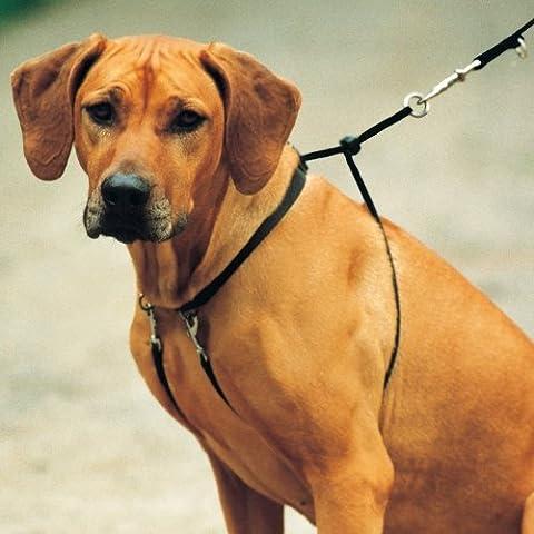 Arnes para perros TRIXIE Easy Walk Basic