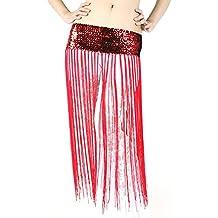 18fe9a74da10 Loveble Brilliant Hip Belly Oriental Dance Fringe Tassel Foulard Ceinture  Jupe