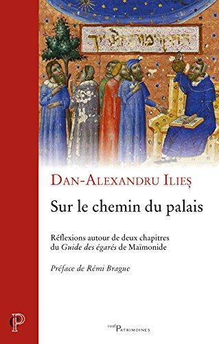 Sur le chemin du Palais par Dan-Alexandru Ilies
