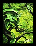 Kleine Leinwand Walddrache | Forest Dragon 25 x 19 cm | Anne Stokes Age of Dragons | Fantasy Bild Poster