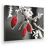 Winter Bild D290, 1 Teil 90x60cm Leinwand auf Holzrahmen aufgespannt, FineArt Print, UV-stabil und wasserfest, Kunstdruck für Büro oder Wohnzimmer, Deko Bild