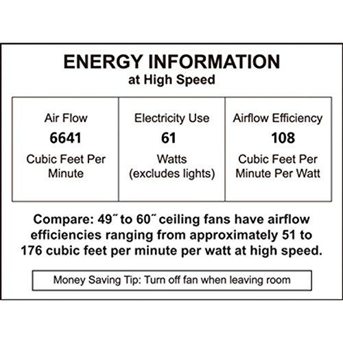 51pi3l05HaL. SS500  - Fanimation Outdoor Ceiling Fan Motor, Metal, Brushed Nickel