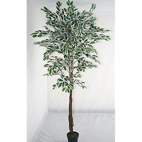 Homescapes árbol Ficus artificial, hojas verdes y blancas, 120 cm, en maceta