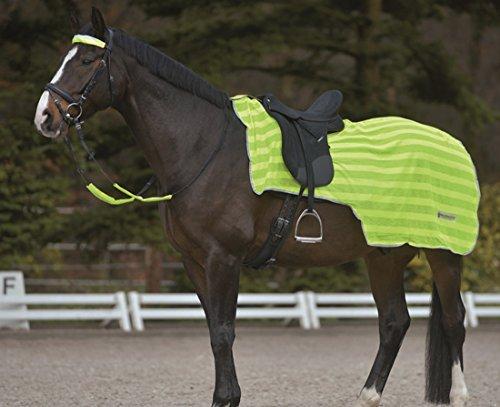 Reflex Nierendecke | reflektierende Nierendecke | Pferdedecke Einheitsgröße