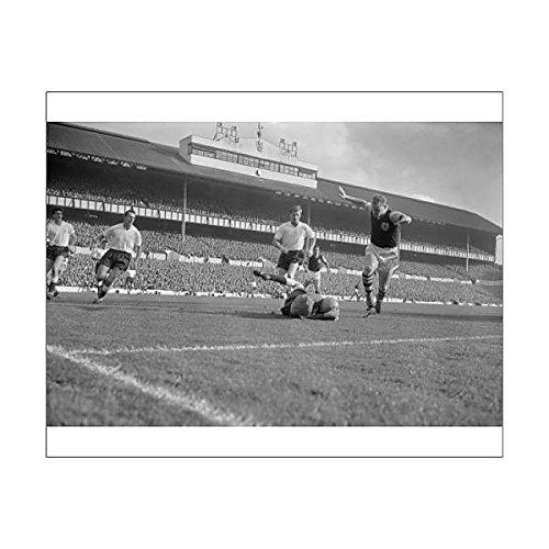 10×8-Print-of-Soccer-Division-One-Tottenham-Hotspur-v-Burnley-FC-White-Hart-Lane-12174514