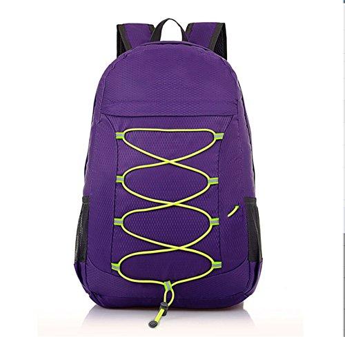 Ruanlei @ Tela Casual zaini viaggio/ laptop backpack / multifunzione zaino business/ Backpack resistente all'acquaIl multi-purpose outdoor travel double borsa a tracolla, Viola