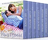 #9: Picnics & Promises: Six Delicious Summer Romances