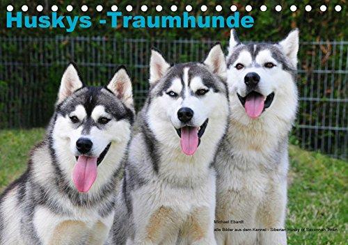 (Tischkalender 2019 DIN A5 quer): Der Siberian Husky, gezeigt von seiner schönsten Seite (Monatskalender, 14 Seiten ) (CALVENDO Tiere) ()