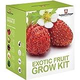 Exotische Frucht- Samen Wachstums Set Geschenkbox von Thomspon & Morgan - 5 fruchtig Aromen to Grow ; Erdbeere, Melone, Cherrytomate, Physalis & Gurke Samen