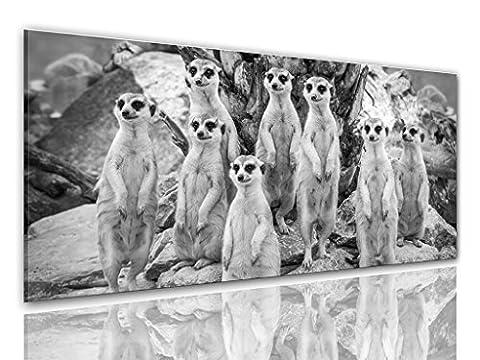 BILDER-MANUFAKTUR LEINWAND KUNSTDRUCK WANDBILD BILD BILDER, 8307 Farbe 4, 100 cm x 40 cm ERDMÄNNCHEN SURIKATE SCHARRTIER NATUR TIERE MANGUSTEN AFRIKA