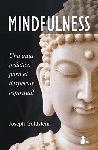 MINDFULNESS: Una guía práctica para el despertar espiritual (Psicologia / Autoayuda)