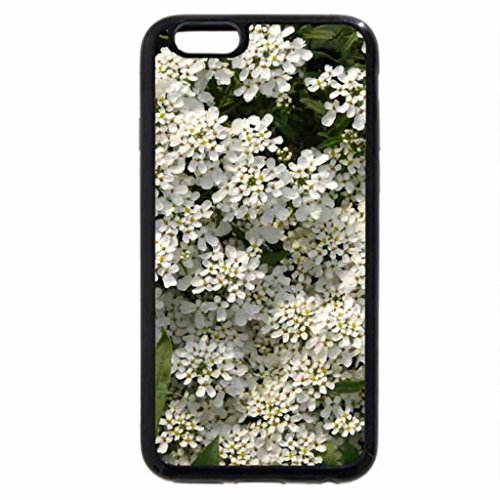 iPhone 6S / iPhone 6 Case (Black) CASCADE OF WHITE