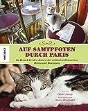 Auf Samtpfoten durch Paris: Zu Besuch bei den Katzen der schönsten Brasserien, Hotels und Boutiquen