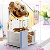 Dehang - Caja de música mecánica para bebés - Diseño de Fonógrafo con trompeta - Juguete con sonido instrumento musical para bebés niños niñas - Blanco