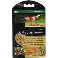 Dennerle Nano Catappa Leaves(badamier) 12 feuilles