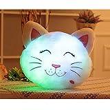 HITOP Almohada Luminosa LED creativas lindo gato Cojín regalos Ragdoll Peluches Pillow Cushion Multi-Color accesorios para el hogar y decoración cojines