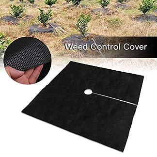 10PCS Cubierta de suelo de control de malezas, Cubierta de protección de malezas, Tela de hierba de huerto no tejida transpirable e hidratable degradable para plantas de jardín, 1 × 1M