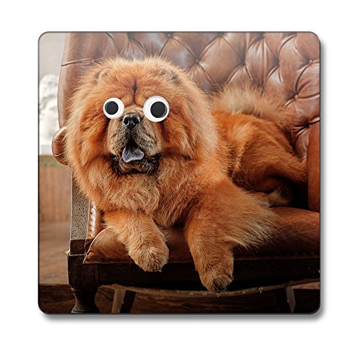 chow-chow-dog-googley-eyes-animal-coaster-085