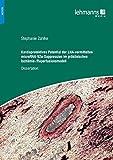Kardioprotektives Potential der LNA-vermittelten microRNA-92a-Suppression im präklinischen Ischämie-/Reperfusionsmodell