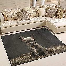 Use7 Teppich, Motiv: Französische Bulldogge Welpe, Vintage-Teppich, für Wohnzimmer, Schlafzimmer, Textil, Multi, 203cm x 147.3cm(7 x 5 feet)