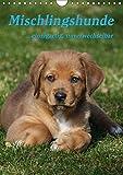Mischlingshunde (Wandkalender 2019 DIN A4 hoch): Ein Kalender für den Tierschutz (Monatskalender, 14 Seiten ) (CALVENDO Tiere)