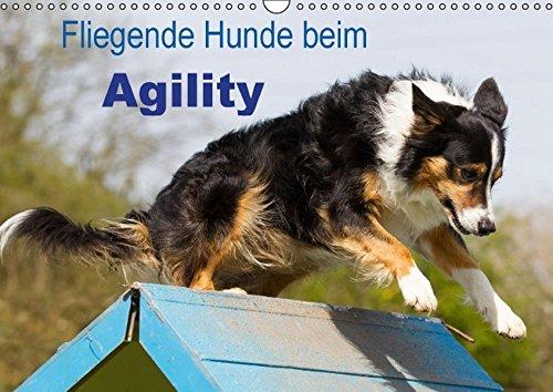 Fliegende Hunde beim Agility (Wandkalender 2016 DIN A3 quer): Aktive und bewegungsfreudige Hunde bei einer der Ausübung einer modernen Hundesportart (Monatskalender, 14 Seiten) (CALVENDO Tiere)