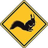 U24 Aufkleber Vorsicht Eichhörnchen Autoaufkleber Sticker